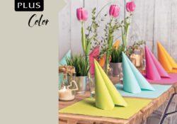 Plus-Color_18-001