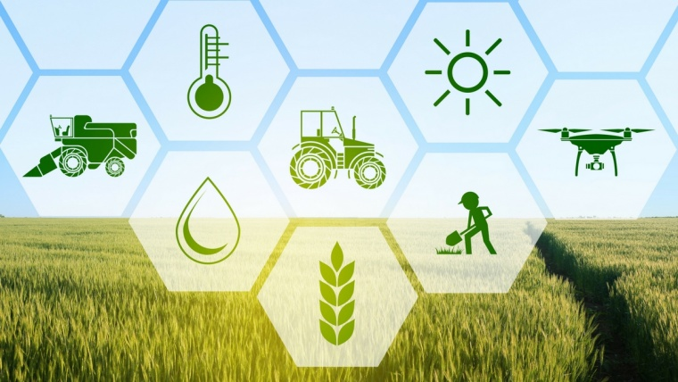 #CMINFORMA – AgriFood e FoodTech in Italia: tra agricoltura, cibo e tecnologia